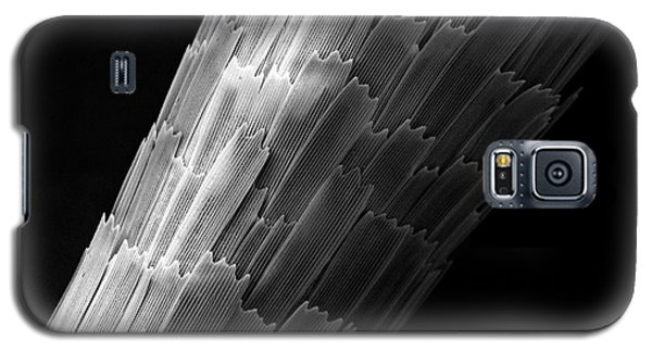 Antenna Galaxy S5 Case