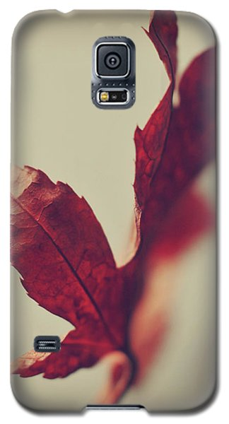 Anxious Nights Galaxy S5 Case