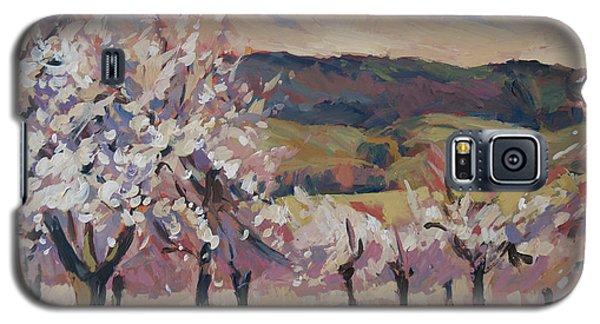 Apple Blossom Geuldal Galaxy S5 Case