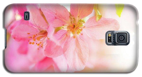 Apple Blossoms Bright Glow Galaxy S5 Case