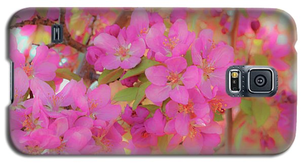 Apple Blossoms C Galaxy S5 Case