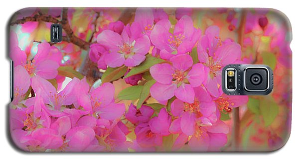 Apple Blossoms C Galaxy S5 Case