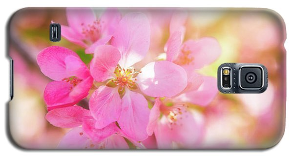 Apple Blossoms Cheerful Glow Galaxy S5 Case