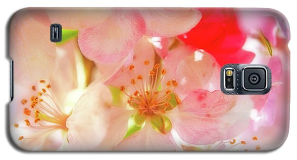 Apple Blossoms Textures Galaxy S5 Case
