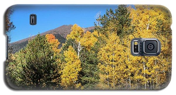 Arizona Aspens With Mountains Galaxy S5 Case