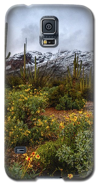 Arizona Flowers And Snow Galaxy S5 Case