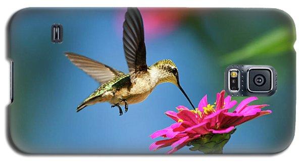 Art Of Hummingbird Flight Galaxy S5 Case