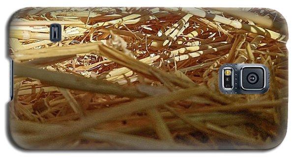 Golden Straw Bed Galaxy S5 Case
