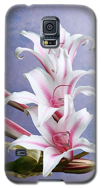Pink Striped White Lily Flowers Galaxy S5 Case