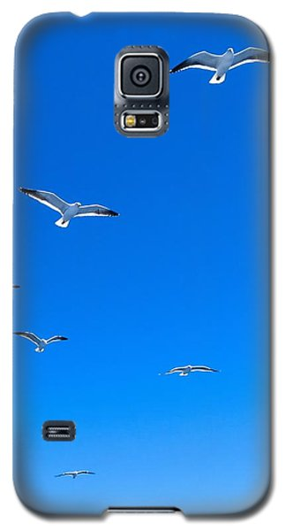 Group Of Seagulls On Blue Sky In The Argentine Patagonia Galaxy S5 Case