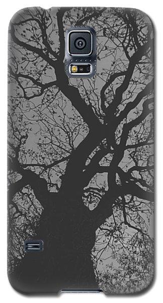 Ash Tree Galaxy S5 Case