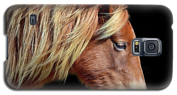 Assateague Pony Sarah's Sweet Tea Portrait On Black Galaxy S5 Case
