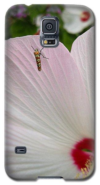 Atteva Aurea 1 Galaxy S5 Case