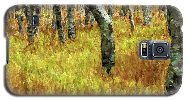 Autumn At Craggy Gardens Ap Galaxy S5 Case