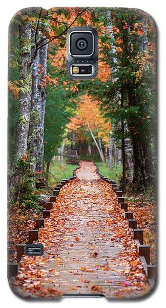 Autumn At Jesup Path Galaxy S5 Case