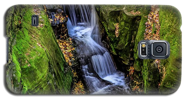 Autumn At Pewits Nest Galaxy S5 Case