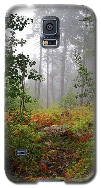 Autumn Fog  Galaxy S5 Case
