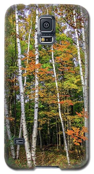 Autumn Grove, Vertical Galaxy S5 Case