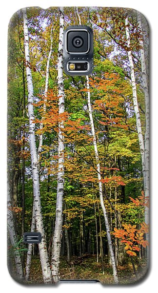 Autumn Grove, Vertical Galaxy S5 Case