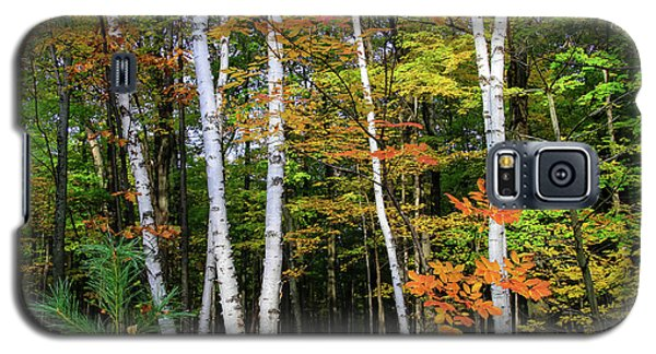 Autumn Grove, Wisconsin Galaxy S5 Case