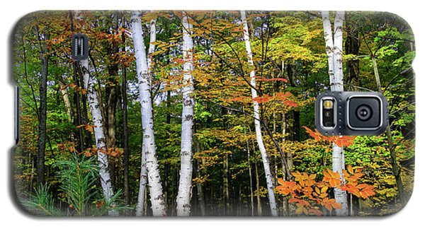 Autumn Grove, Wisconsin Galaxy S5 Case