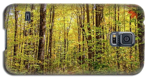 Autumn Hike Galaxy S5 Case