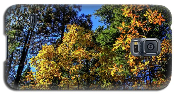Autumn In Apache Sitgreaves National Forest, Arizona Galaxy S5 Case