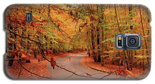 Autumn In Holmdel Park Galaxy S5 Case