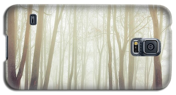 Cold Galaxy S5 Case - Autumn Landscape With Tall Bare Trees by Marina Zezelina