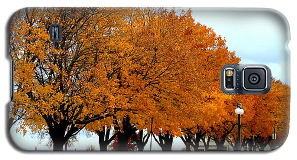 Autumn Leaves In Menominee Michigan Galaxy S5 Case