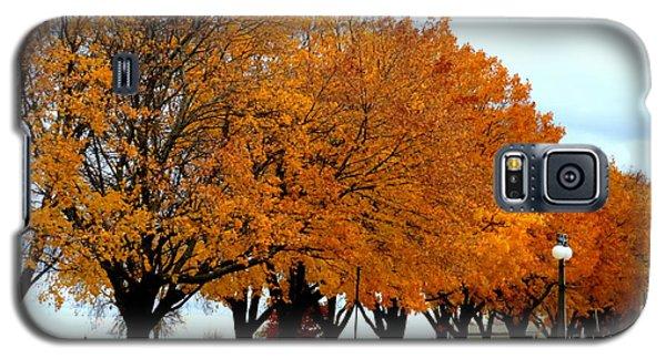 Autumn Leaves In Menominee Michigan Galaxy S5 Case