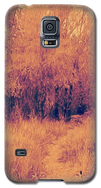 Autumn Mystery Galaxy S5 Case