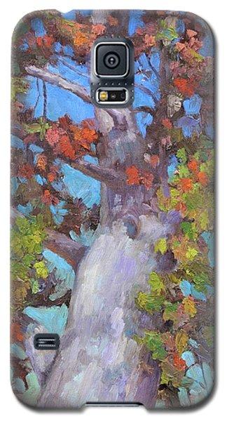 Autumn Oak Galaxy S5 Case