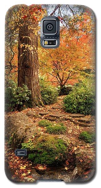 Autumn Stream In Lithia Park Galaxy S5 Case