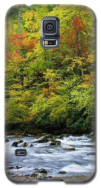 Autumn Stream Galaxy S5 Case