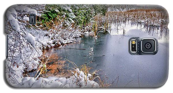 Autumn To Winter Galaxy S5 Case