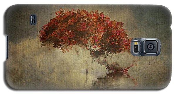 Autumn Tree In The Mist Galaxy S5 Case