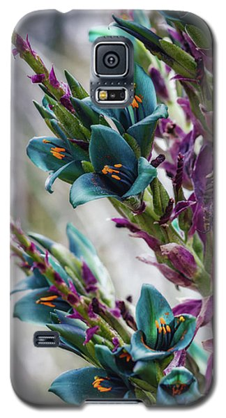 Azure Dreams Galaxy S5 Case
