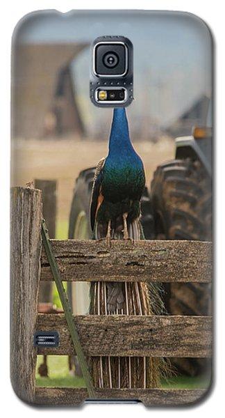 B33 Galaxy S5 Case
