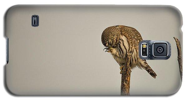 B41 Galaxy S5 Case