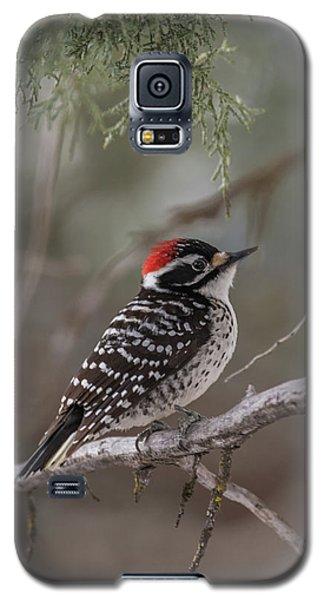 B42 Galaxy S5 Case