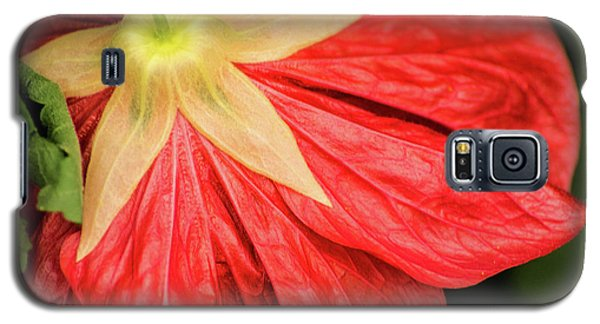 Back Of Red Flower Galaxy S5 Case