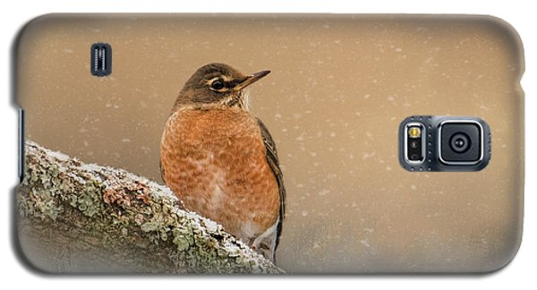 Backyard Visitor Galaxy S5 Case