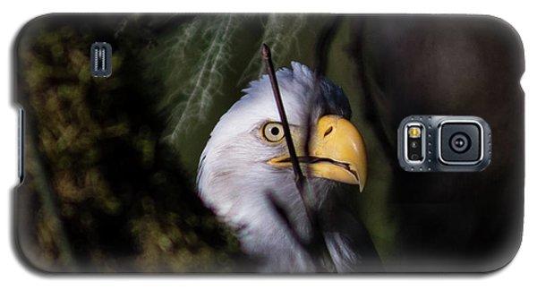 Bald Eagle Behind Tree Galaxy S5 Case