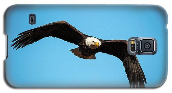 Bald Eagle In Flight  Galaxy S5 Case