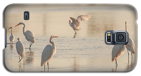 Ballet Of The Egrets Galaxy S5 Case