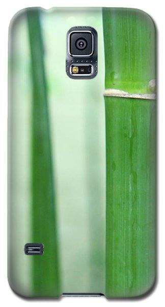 Bamboo 0312 Galaxy S5 Case