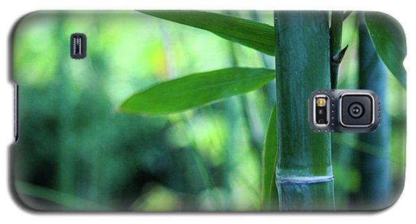 Bamboo 0321 Galaxy S5 Case