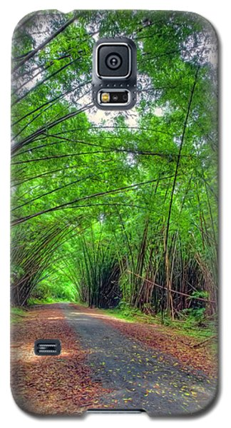 Bamboo Cathedral 2 Galaxy S5 Case