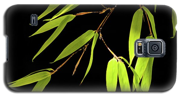 Bamboo Leaves 0580a Galaxy S5 Case